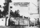 Узники крови: история Холокоста в Эстонии