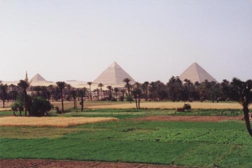 ©Egiptus051