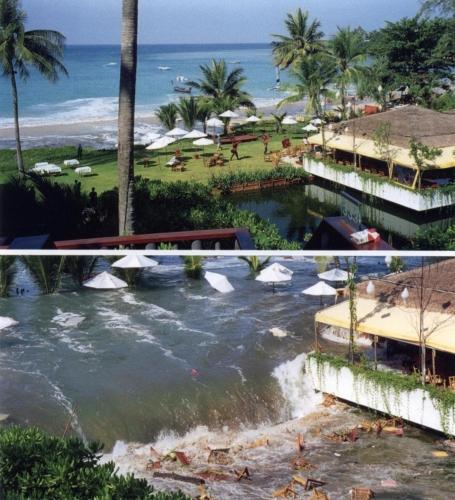 Tsunami15