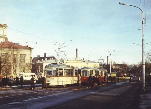 Viru trammipeatus